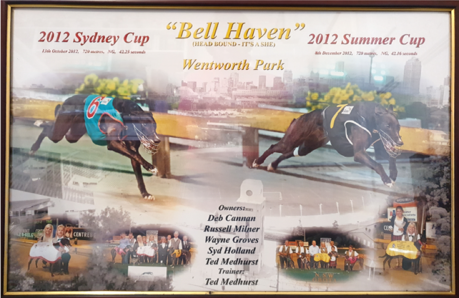 Bell's 2012 Sydney Cup – Summer Cup double