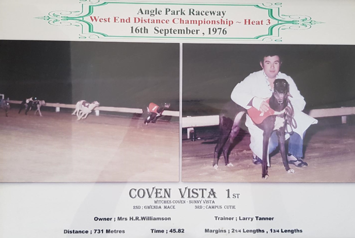Larry Tanner and Coven Vista winning Heat of the 1976 South Australian Distance Championship