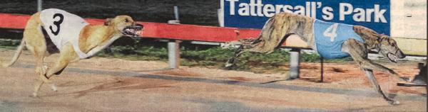 2010 St.Leger